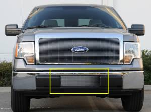Exterior - Grilles - T-Rex - T-Rex Billet Bumper Grille, Polished, Aluminum, 1 Pc, Bolt-On 25569