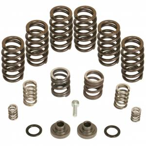 Performance - Engine Parts - BD Diesel - BD Diesel Governor Spring Kit, 4000rpm - 1994-1998 Dodge 12-valve/P7100 Pump 1040185